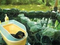 ペンションアニマーレin那須の天然温泉