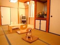 ペンションアニマーレのペットと泊まれる部屋