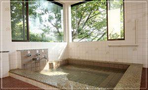 アップルシードの天然温泉