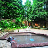 ブルーリッジホテルの神鍋温の露天風呂泉