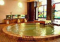 だいこく館の天然温泉
