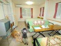 フラットレット草津のペットと泊まれる部屋
