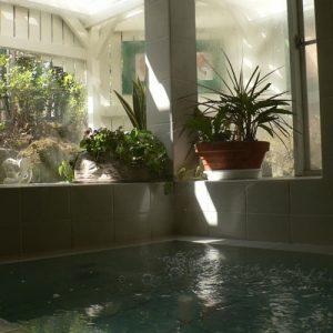 ガラスの仔犬の天然温泉