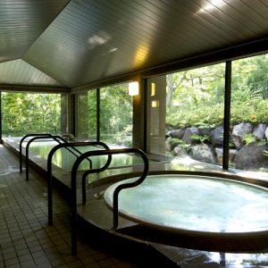 小田急箱根ハイランドホテルの天然温泉