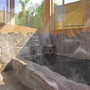伊豆ドッグペンションことぶきベースの天然温泉
