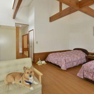 ルネッサ赤沢のぺットと泊まれる部屋