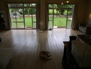 maison_MGのペットと泊まれる部屋