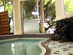 元湯旅館の武田尾温泉