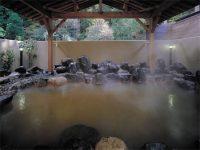 須賀谷温泉の天然温泉