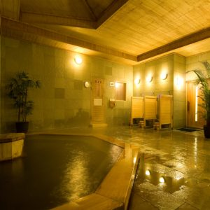 ウェルネスの森那須の天然温泉