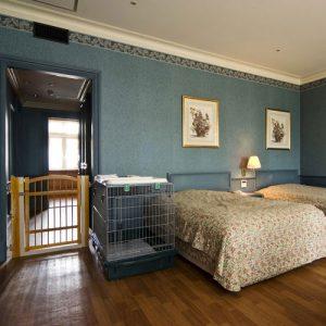 ウェルネスの森那須のペットと泊まれる部屋