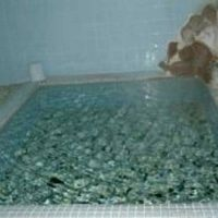 薬研荘の薬研温泉