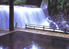 薬師温泉旅籠の天然温泉