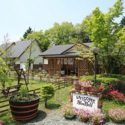 ガーデン INN Blue Bell(熊本県でペットと泊まれる宿)