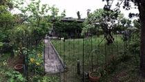 maison_MG(沖縄県でペットと泊まれる宿)