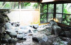 Dog Pension R65の天然温泉