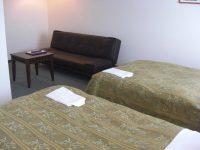 ひらたメイプルホテルのペットと泊まれる部屋