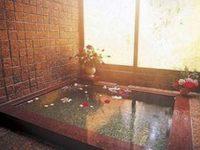 ペンション琵琶湖の天然温泉
