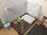 ゲストハウスcomodoのペットと泊まれる部屋