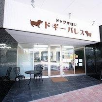 神戸ポートタワーホテル なごみの湯宿のドッグホテル
