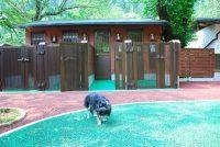 奥水間温泉のペットが泊まれるワンワンハウス