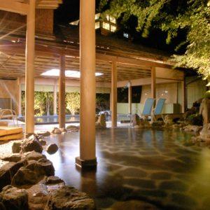 リブマックスリゾート川治の天然温泉