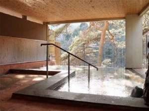 リブマックスリゾート鬼怒川の天然温泉