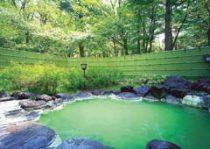 日光アストリアホテルの天然温泉