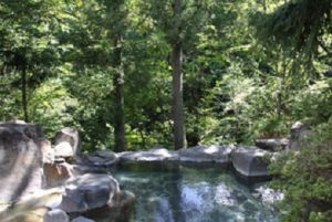 ゆ宿おさんぽ日和の天然温泉