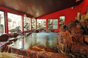 恵那ラヂウム温泉館の天然温泉