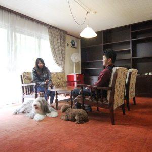 ホテルアスプロスのペットと泊まれる部屋