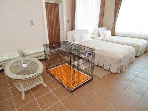ホテルブルーベリーヒル勝浦のペットと泊まれる部屋