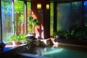 箱根強羅グアムドッグの天然温泉