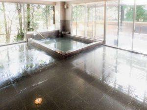 リブマックスリゾート箱根芦ノ湖の天然温泉