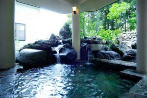 エンゼルグランディア越後中里の天然温泉
