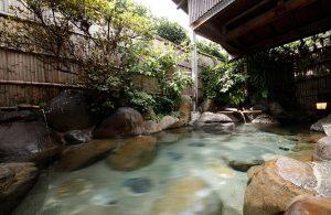 愛犬と泊まれる温泉旅館修善寺絆の天然温泉