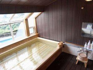 リブマックスリゾート伊豆下田の天然温泉