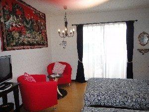 愛犬と泊まる美食と露天風呂の宿モルゲンのぺットと泊まれる部屋