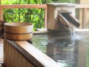 天然温泉があるペットと泊まれる宿