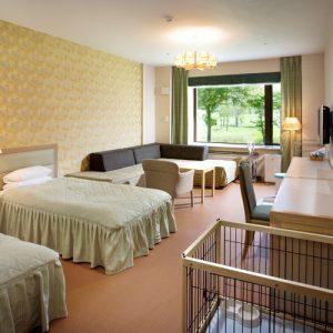 ホテルタングラム斑尾東急リゾートのぺットと泊まれる部屋
