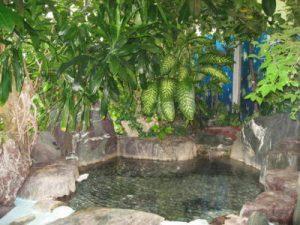 ペンション弓ヶ浜の天然温泉