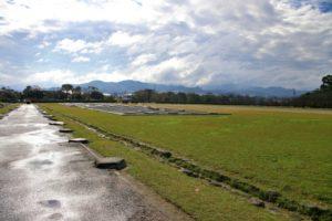 太宰府政庁跡(福岡県の桜の観光名所)