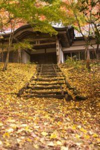 竈門神社(福岡県の桜の観光名所)