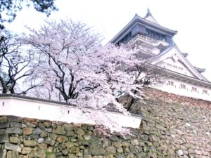 小倉城・勝山公園(福岡県の桜の観光名所)