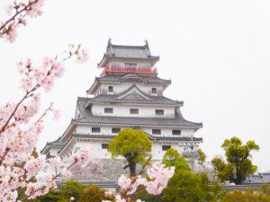 唐津城(佐賀県の桜の観光名所)