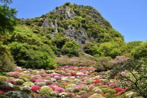 御船山楽園(佐賀県の桜の観光名所)