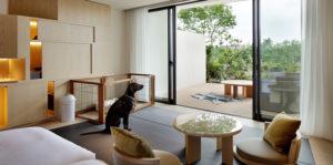 ソラノホテル(東京都立川のペットと泊まれる宿)